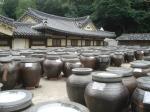 kimchipot